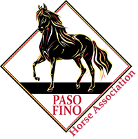 Paso Fino Horses for Sale
